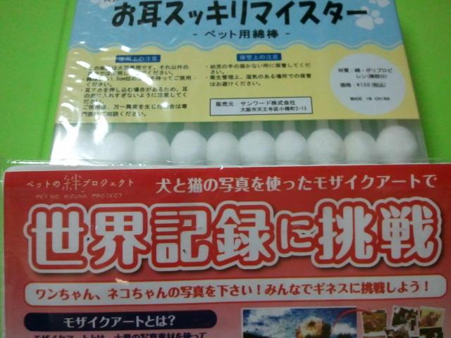 2011-09-25_19_18_45.jpg
