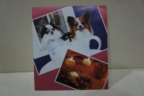 image-20111223235505.png